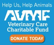 Animal Hospital in Holmdel: VCCF Logo